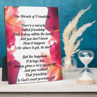 Das Wunder der Freundschaftsplakette Fotoplatte