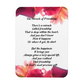 Das Wunder des Freundschafts-Magneten Magnet