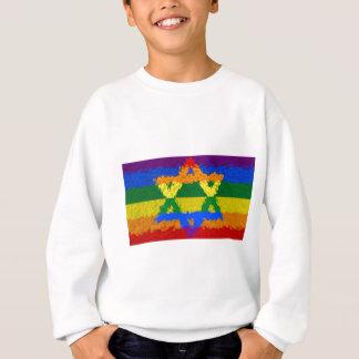 Davidsstern - Jüdisch - Gay Pride Sweatshirt