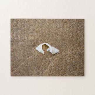 Defektes Muschel-Fotopuzzlespiel Puzzle