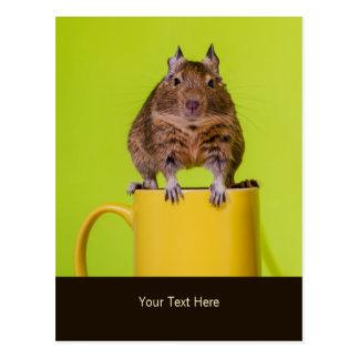 Degu, das auf einer Tasse sitzt Postkarte
