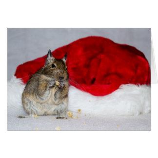 Degu u. Weihnachtsmannmütze-Weihnachten Karte
