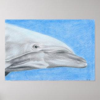 Delfin - Farbstiftzeichnung Poster