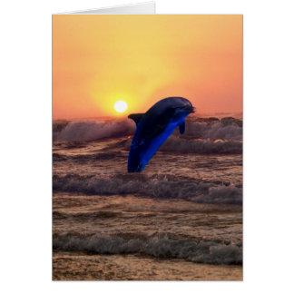 Delphin am Sonnenuntergang Karte