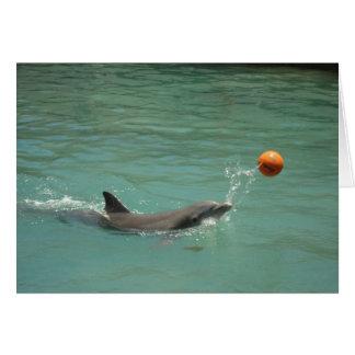 Delphin, der Ball spielt Karte