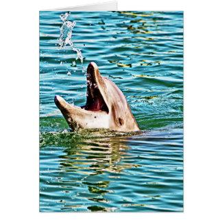 Delphin, der mit Wasser spielt Karte