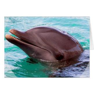 Delphin-Entwurfs-Gruß-Karte Karte