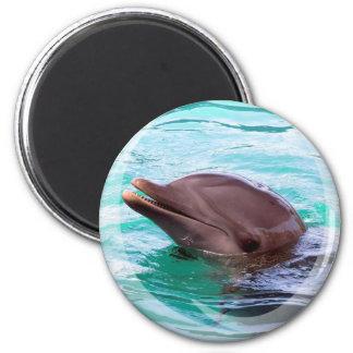 Delphin-Entwurfs-Magnet Runder Magnet 5,7 Cm
