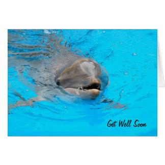 Delphin erhalten wohle Karte
