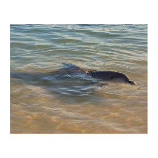 Delphin Holzwanddeko