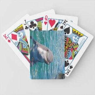 Delphin-Lächeln Bicycle Spielkarten