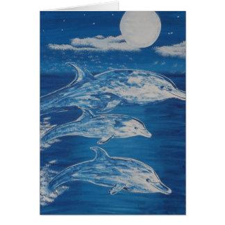 Delphin-MitternachtsSchwimmen Karte