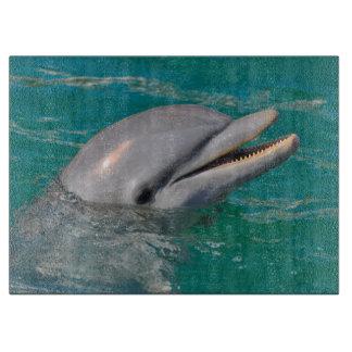 Delphin-nahes hohes schneidebrett