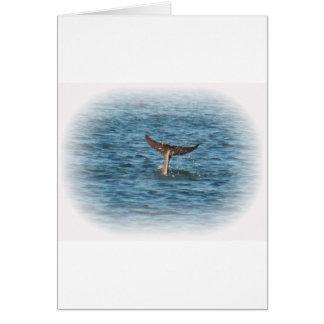 Delphin-Schwanz gerade oben Karte