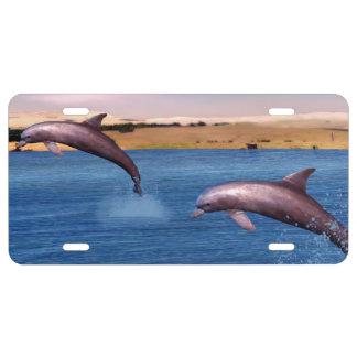 Delphine US Nummernschild