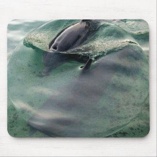 Delphine von Hawaii Mauspad