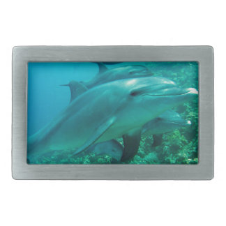 Delphinfisch-Marineozean unter Wasser-Schwimmen Rechteckige Gürtelschnalle
