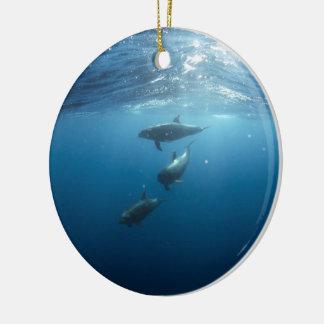 Delphinhülse, die underwater schwimmt keramik ornament