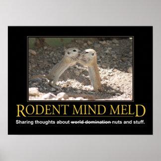 Demotivational Plakat: Eichhörnchen-Verstand erklä Poster