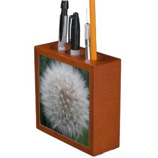 Den Löwenzahn-Blumen-Schreibtisch säen sauber Stifthalter