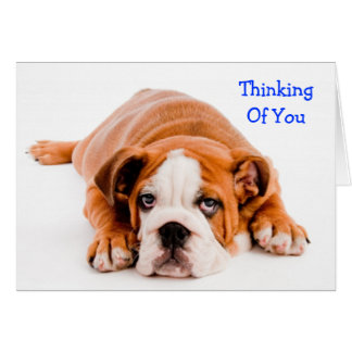Denken an Sie Bulldoggen-Gruß-Karte Karte