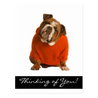 Denken an Sie Bulldoggen-Hündchen grüßenPoscard Postkarte