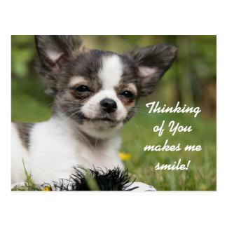 Denken an Sie Chihuahua Postkarte