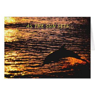 Denken an Sie… Delphinsonnenuntergangsprung Grußkarte