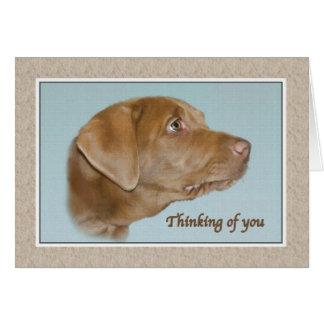Denken an Sie Karte mit Labrador-Hund