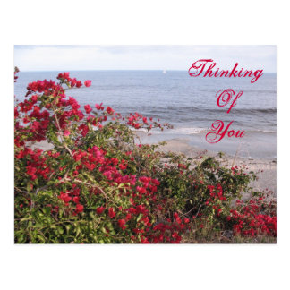 Denken an Sie Malibu Postkarte