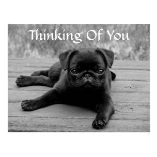 Denken an Sie Mops-Welpen-Hundepostkarte (Vers) Postkarte