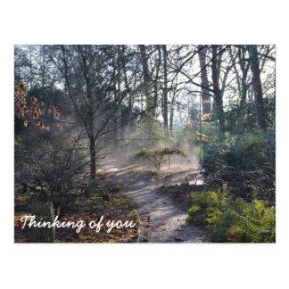 Denken an Sie nebelhafter Wintergarten Postkarte