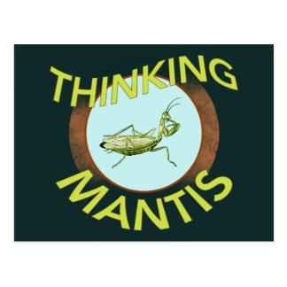 Denkender Mantis Postkarte
