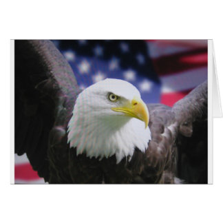 Der amerikanische Adler Grußkarte