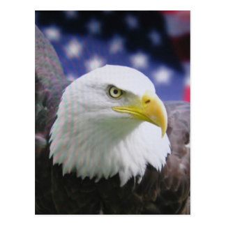 Der amerikanische Adler