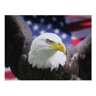 Der amerikanische Adler Postkarten