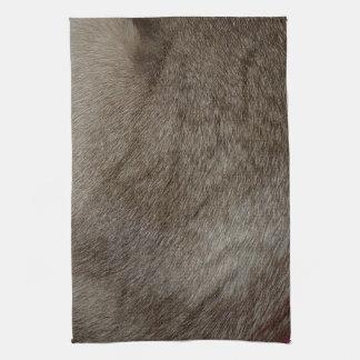 Der Blick des luxuriösen Siegel-Punkt-siamesische Handtuch