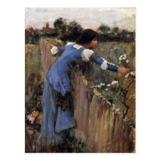 Der Blumen-Picker Postkarte