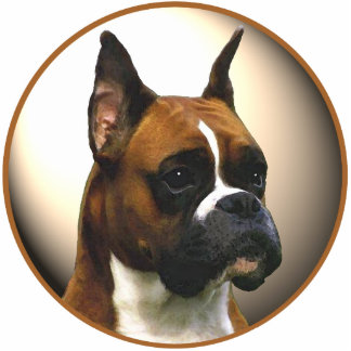 Der Boxer-Hund Freistehende Fotoskulptur