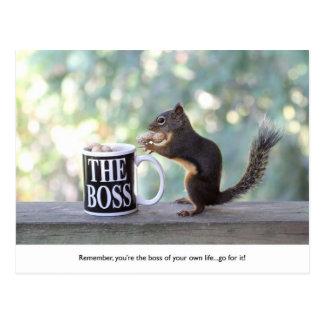 """""""Der Chef-"""" Eichhörnchen Postkarte"""