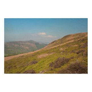 Der Derbyshirehöchstbezirk Holzwanddeko