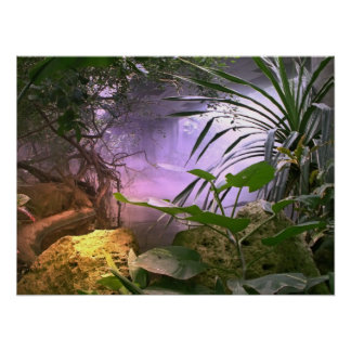 Der Dschungel Poster