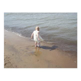 Der Eriesee-Strand Postkarte