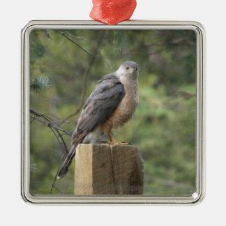 Der Falke des Fassbinders Silbernes Ornament