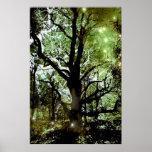 Der feenhafte Baum Poster