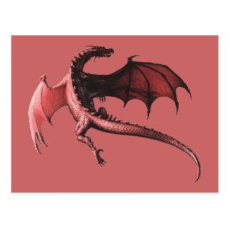 Der Flug des Drachens - Postkarten