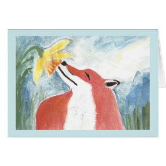 Der Fox und die Narzisse Karte