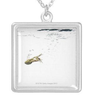 der Frosch, der in das Wasser springt und taucht Versilberte Kette