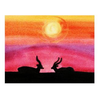 Der Gazellen-@ Sonnenuntergang (Kunst Kimberlys Postkarte