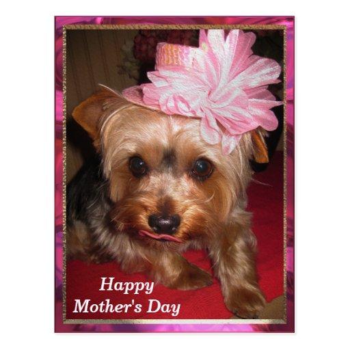 Der glückliche Tag der Mutter Yorkie Postkarte